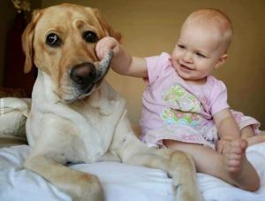 5+1 λόγοι για να κάνεις ένα.. παιδί για το σκυλί σου!!